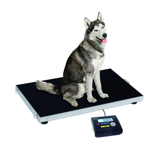 báscula para pesar animales con indicador